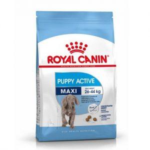 Головна full Royal Canin MAXI JUNIOR ACTIVE zoolove